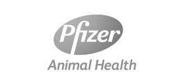 16_Pfizer